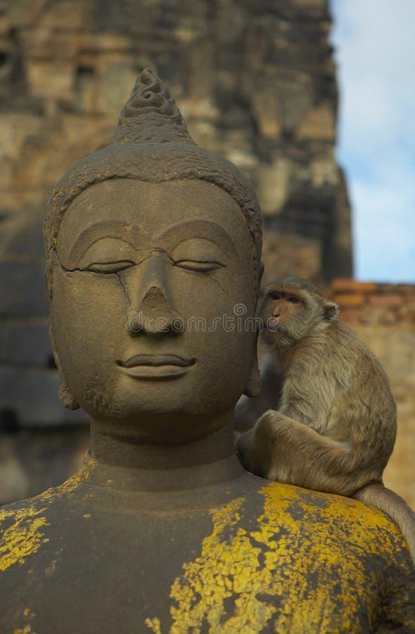 Download Whisper stock photo. Image of lopburi, asia, monkey, bhuddism - 1452664