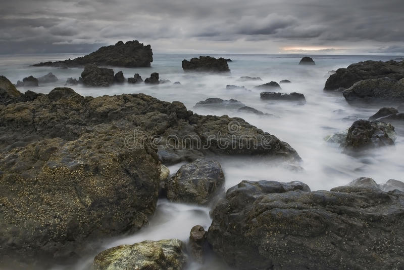 Whispy Shoreline