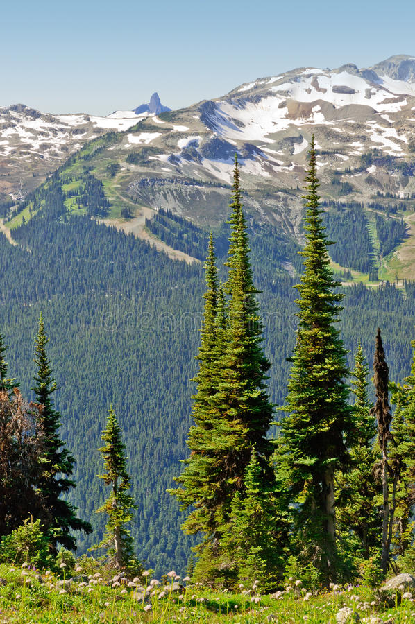 Whistler and Black Tusk. A view of Whistler Mountain with Black Tusk in the distance stock photography
