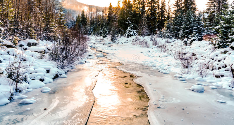 Whistler Creek. A partially frozen Whistler Creek shot as the sun was setting. Golden light. Snow covered trees. Ice and water royalty free stock image