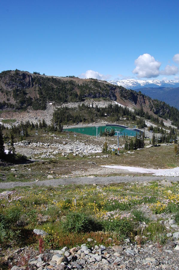 Download Whistler Mountain Top In September Stock Photo - Image: 21059338