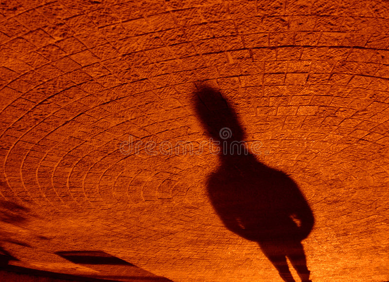 whit текстуры тени стоковые фото