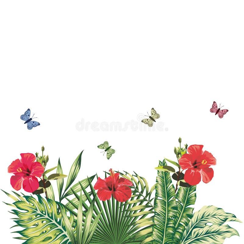 Whit vermelho das plantas tropicais das borboletas do hibiscus da composição floral ilustração royalty free
