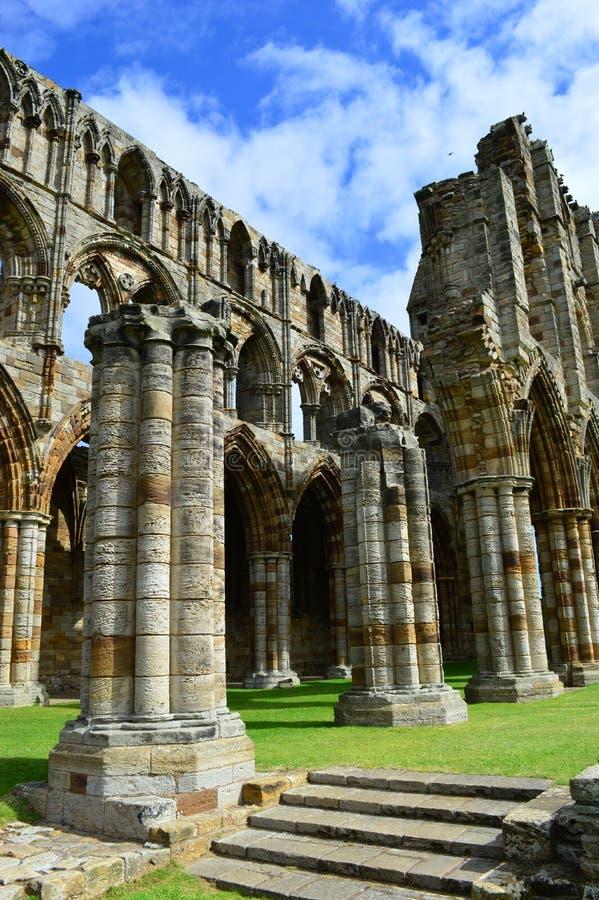 whitby abbey royaltyfri foto