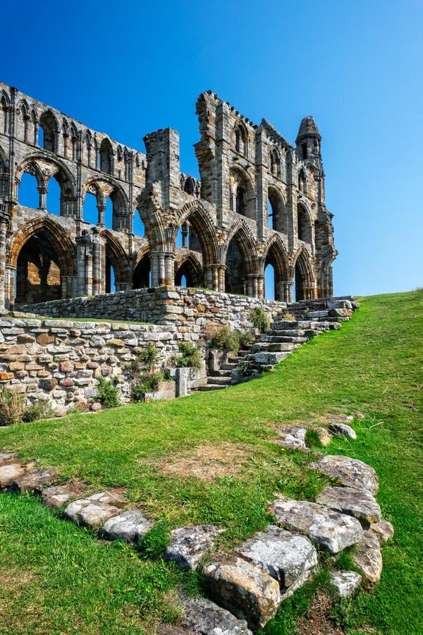 whitby abbey arkivfoton