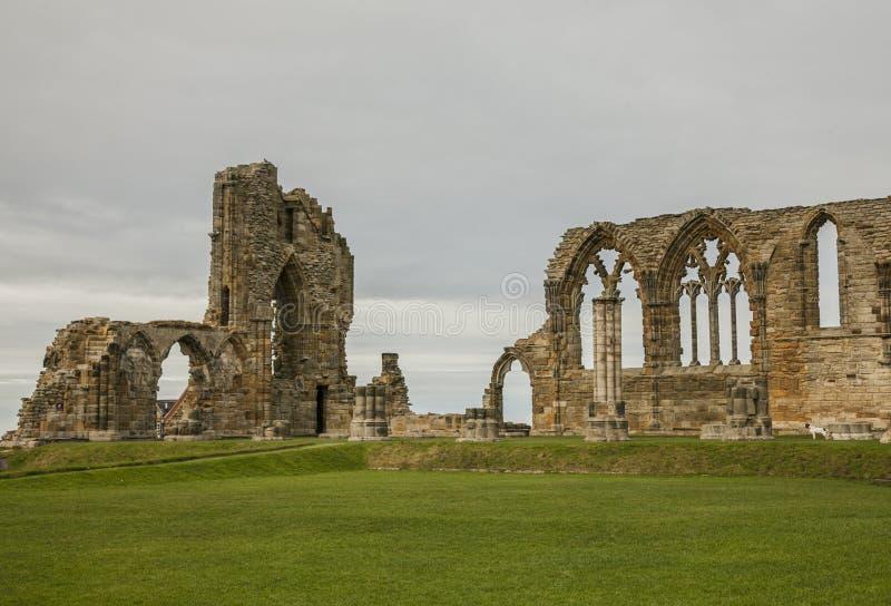 Whitby, Abby - uma vista das ruínas e dos prados fotos de stock
