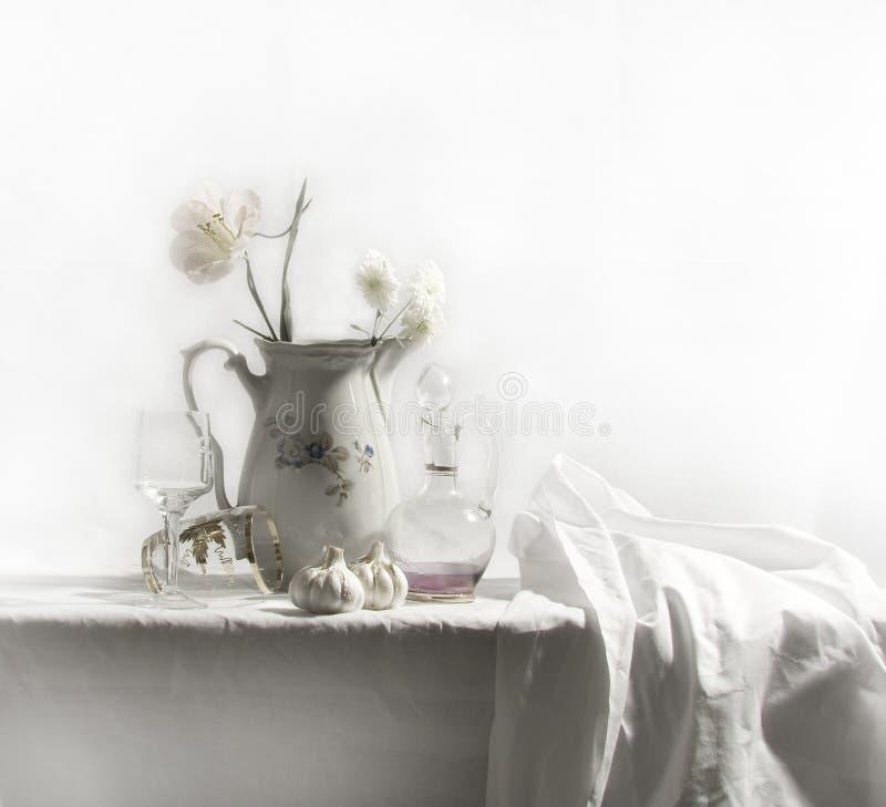 white żyje zdjęcie stock