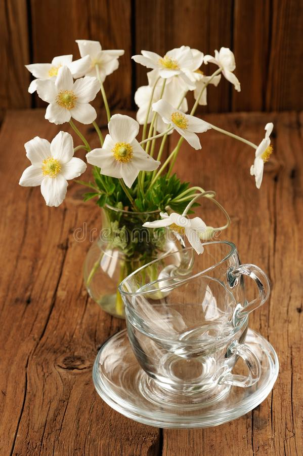 White anemones and two glass cups and saucers on wooden background royalty free stock photography