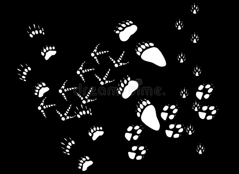 Download White animals footpath stock vector. Illustration of mammal - 16499523