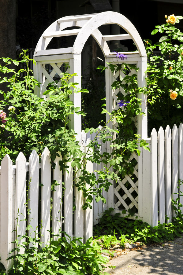 Download White arbor in a garden stock photo. Image of outside - 6075082