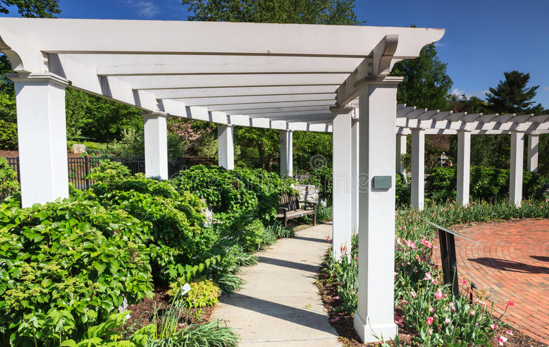 White Arbor Hershey Gardens Pennsylvania royalty free stock photos