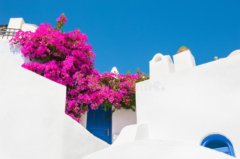 White architecture on Santorini island, Greece. White architecture and pink flowers against the blue sky. Santorini island, Greece stock photography