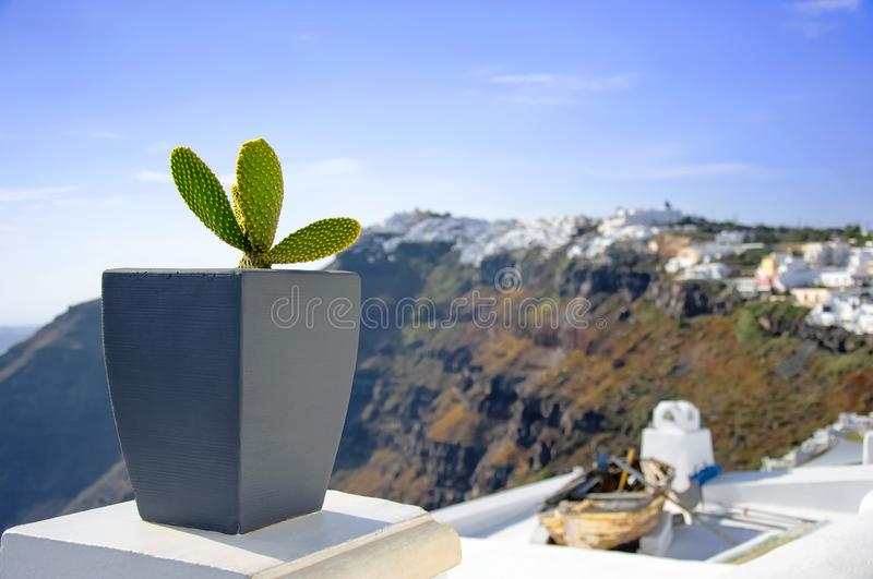 White architecture on Santorini island, Greece, Aegean sea, Europe. Beautiful summer landscape, sea view. Green cactus in the pot. On the streets. Famous travel stock image