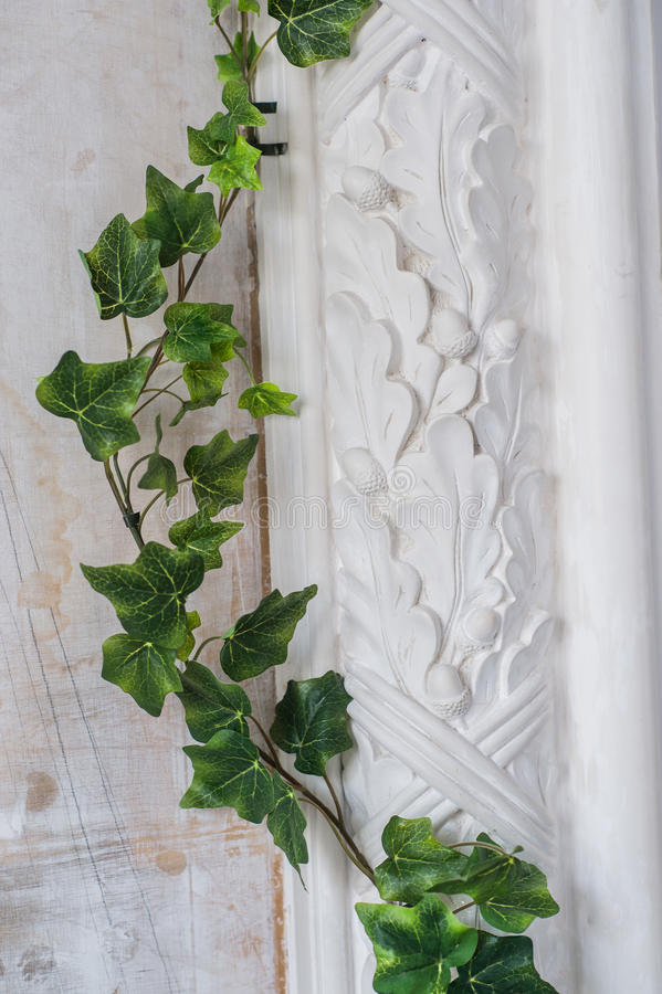 White art stucco gypsum wall with a grean loach branch on it stock photography