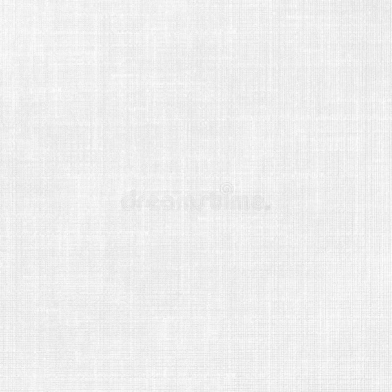 White background royalty free stock photo