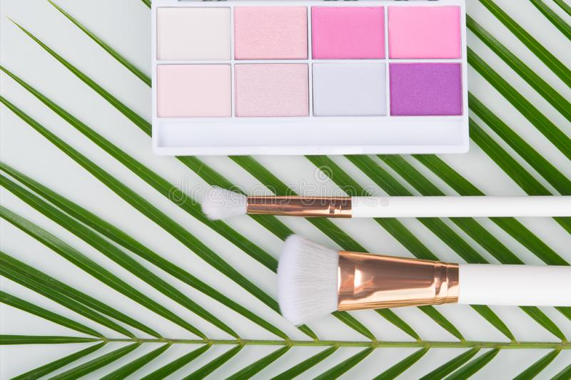 On a white background, close-up, green palm leaf, which are colored shadows for makeup and brushes stock images