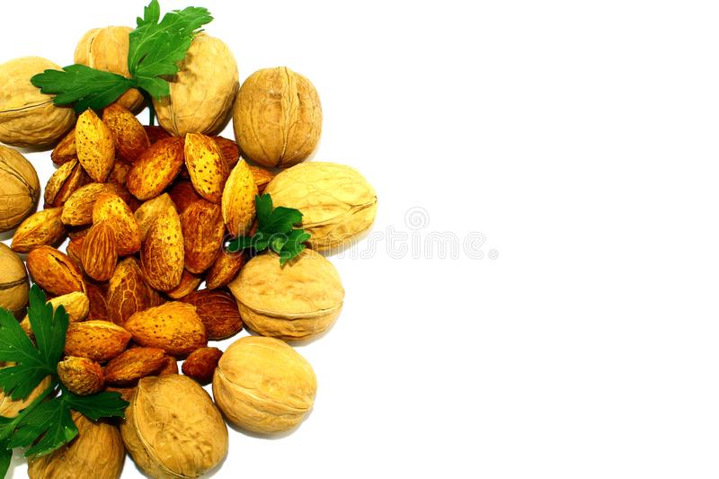 Small circle of walnuts and almonds on white background stock images