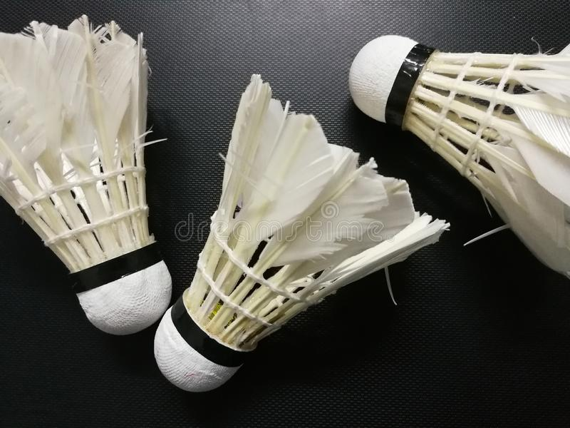 White badminton Shuttlecock Birdie isolated on monochrome background. Concept about something changed, being useless. A lightweight object that is conical in royalty free stock image