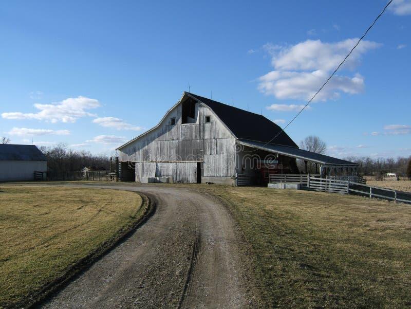 White barn royalty free stock photography