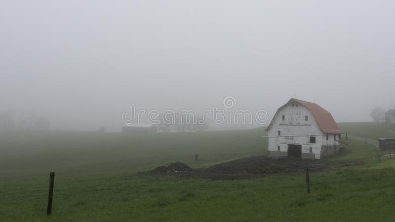 White barn on a foggy morning royalty free stock image