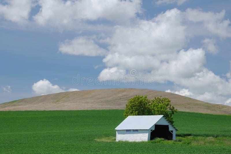 Download White Barn In Green Farmlands Stock Image - Image: 19855363