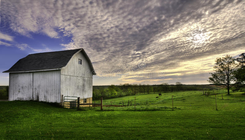 White barn with horses royalty free stock photo