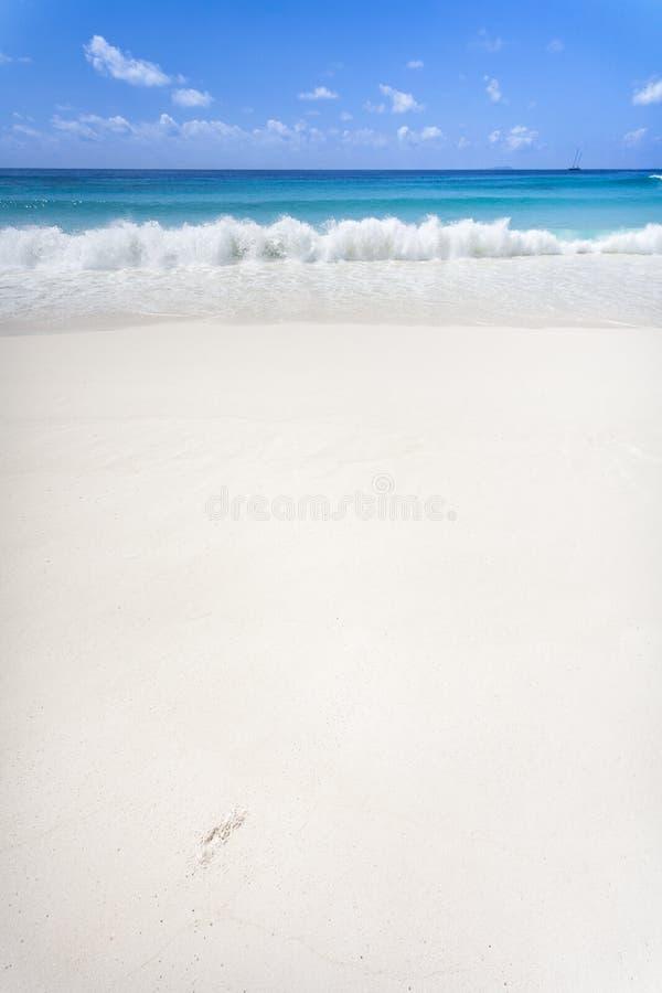 Download White Beach stock image. Image of east, island, shoreline - 47957749