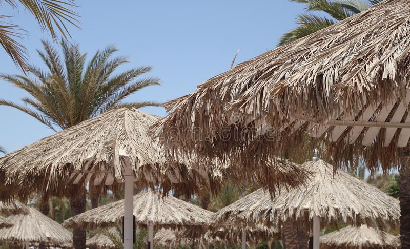 White beach umbrellas with roofs of palm branches royalty free stock image