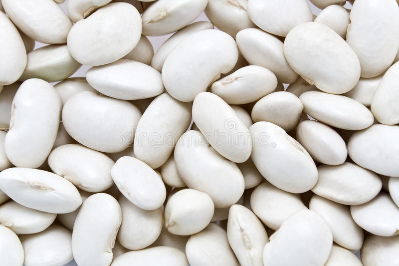 Download White bean background stock photo. Image of uncooked - 25843906
