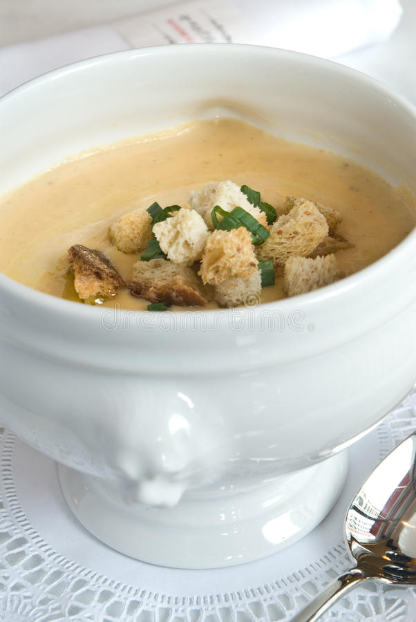 Download White bean soup stock photo. Image of dining, vertical - 12260174
