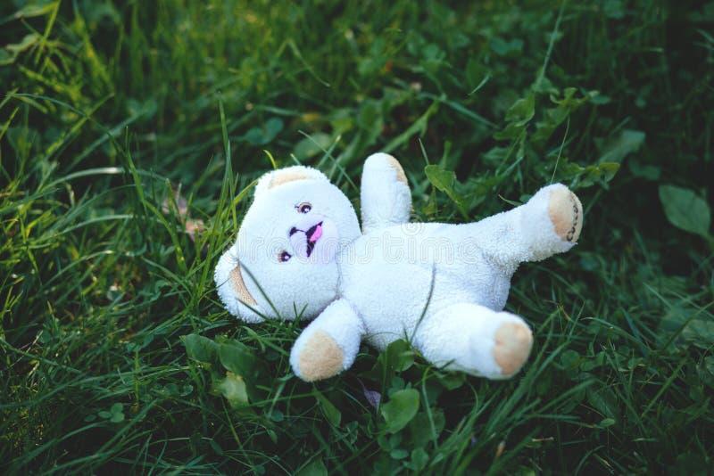 White Bear Plush Toy Free Public Domain Cc0 Image