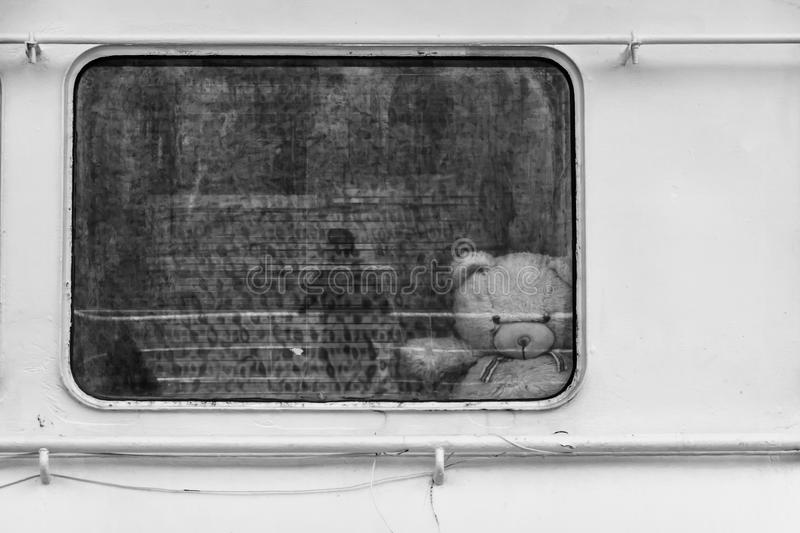White bear through ship window. In a deep depression. White bear through ship window. black white, concept stock photo