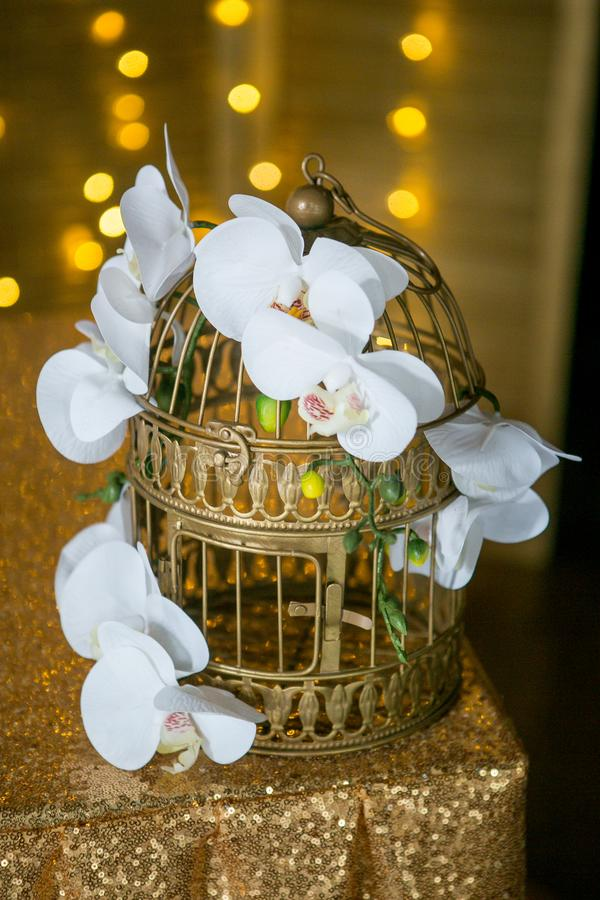 White beautiful orchid on a golden cage. Defocused lights garlands on the background. Wedding or home decor.  royalty free stock photos