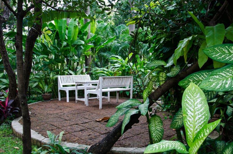 White bench in garden. White bench in a peaceful garden stock photography