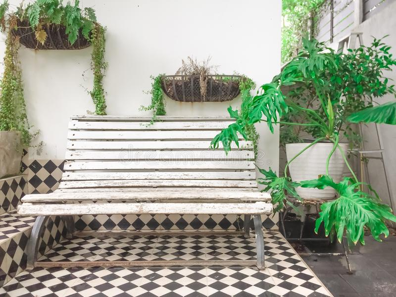 White bench with Ornamental plants or tree at cafe.  stock images