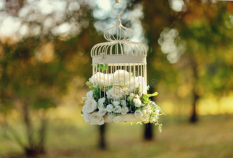 White bird cage. In the park on a branch hanging white bird cage with a beautiful bouquet of flowers royalty free stock image