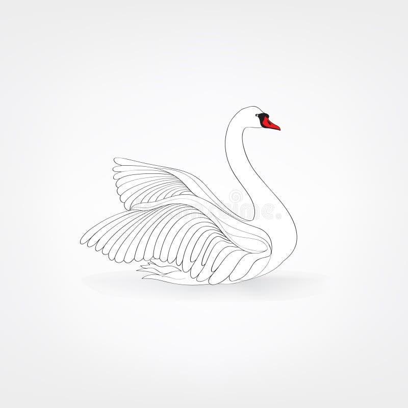 Free White Bird Isolated Over White Background. Swimming Swan Stock Image - 86095391
