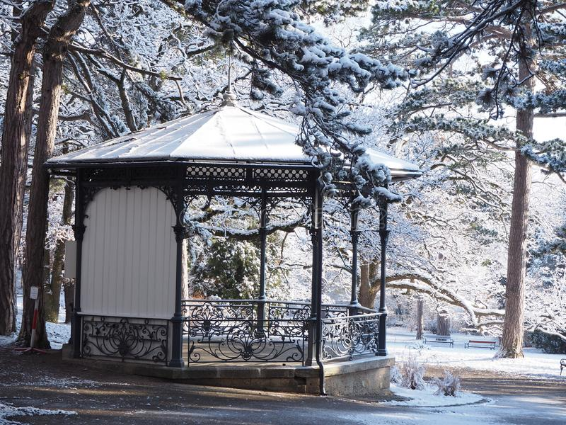 White and Black Canopy on Snow Forest stock photos