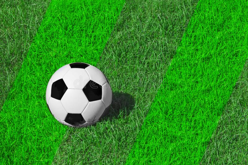 White and black classical soccer ball on fresh green meadow/ grass, copy space for text, concept football royalty free stock photos