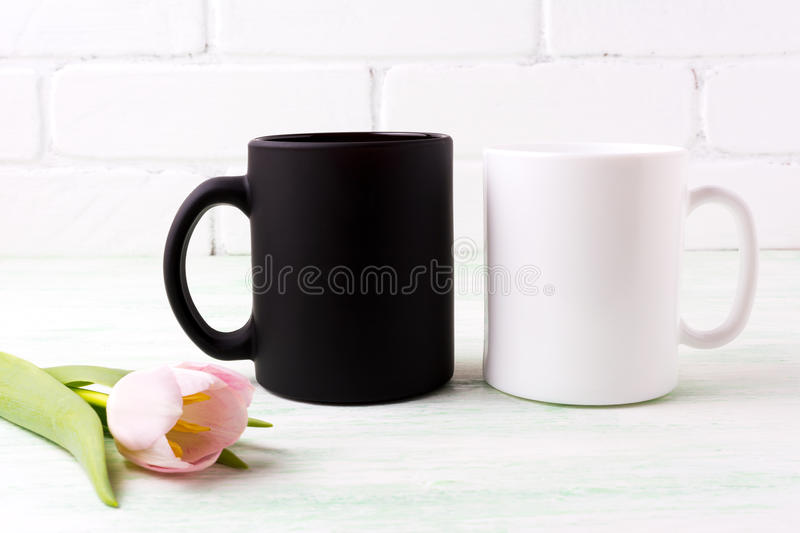 White and black mug mockup with pink tulip royalty free stock image