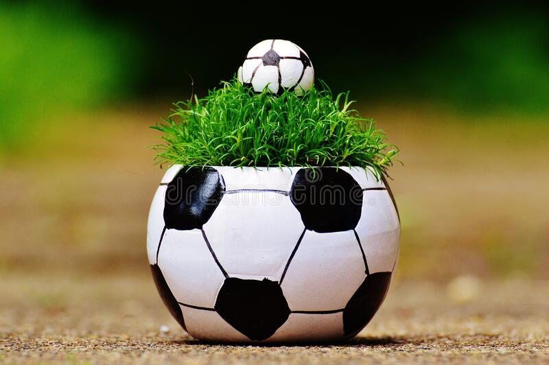 White and Black Soccer Ball Theme Plant Pot stock images