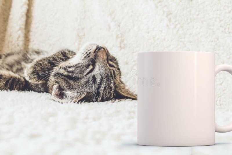 White blank coffee mug to add custom design/quote. stock photos