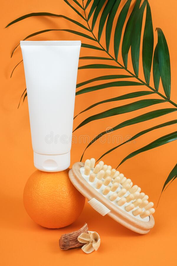 White blank cosmetic tube of cream or body lotion on orange fruit, wooden anti-cellulite massager and green branch palm. Concept. White blank cosmetic tube of stock image