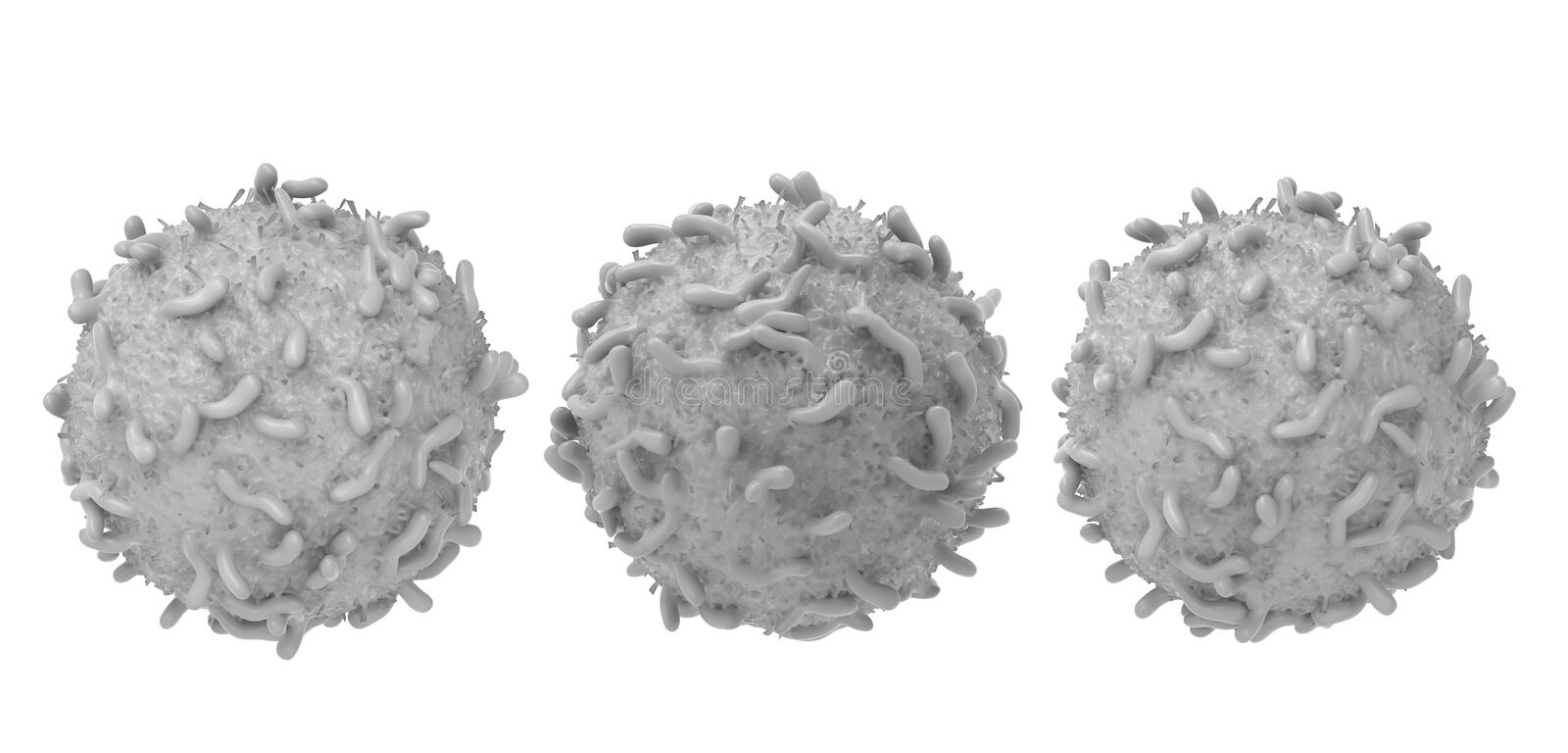 White blood cell. 3d rendering white blood cell isolated on white stock illustration
