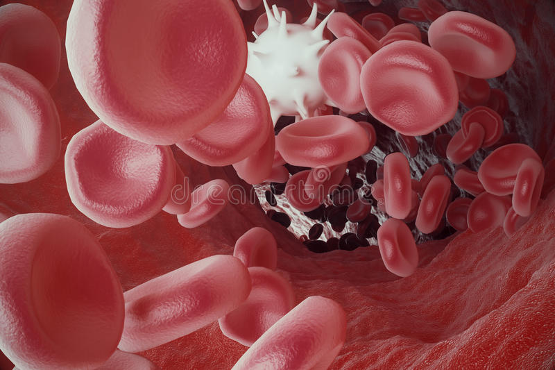 White blood cell between red blood cells, flow insice artery or vein, 3d rendering. White blood cell between red blood cells, flow insice artery or vein. 3d stock illustration