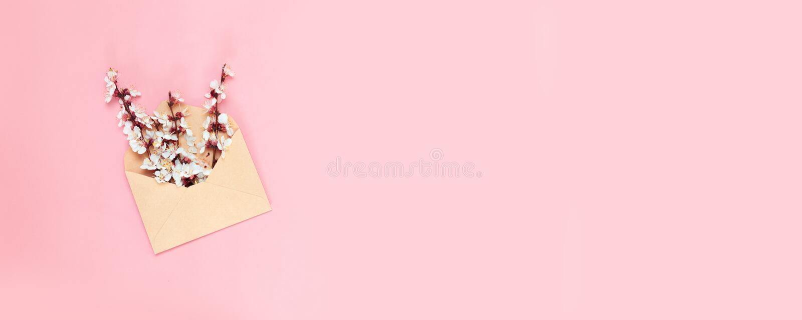 White blossoming branches in envelope on pink background. Top view, greeting card. Opened craft paper envelope full of spring blossom flowers on pink background royalty free stock photos