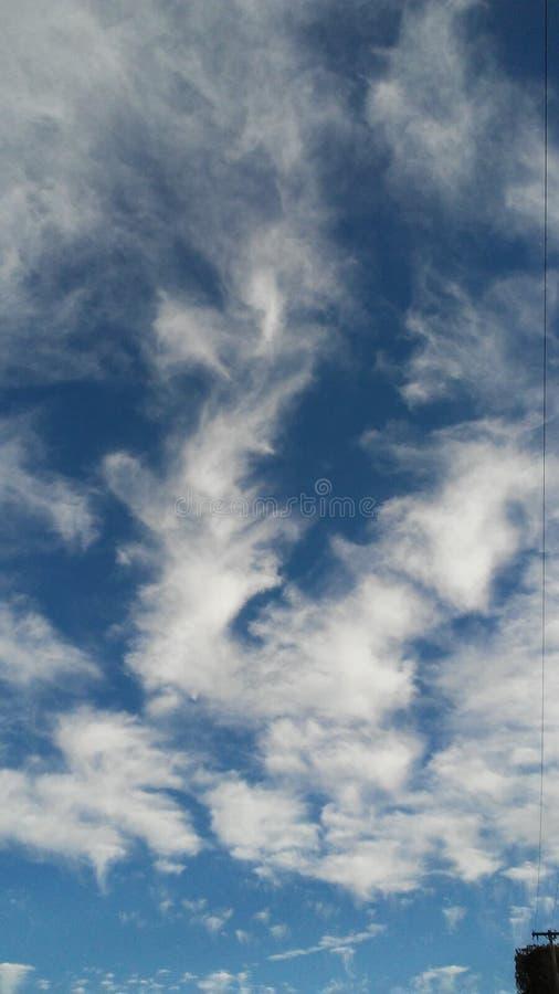 White&blue στοκ εικόνες