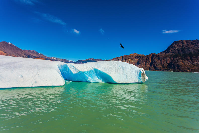 The white-blue ice floe drifts from coastal glacier. Huge white-blue ice floe drifts from coastal glacier. Argentina Patagonia, emerald water of the lake Viedma royalty free stock photos