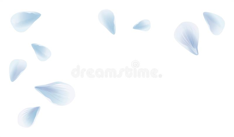 White Blue sakura flying petals isolated on White background. Petals Roses Flowers. Vector EPS 10 cmyk royalty free illustration