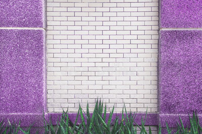 White brick wall with purple marble pole patterns and green leaf plant on background ,copy spcae royalty free stock images